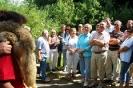 2008 Furth im Wald_3